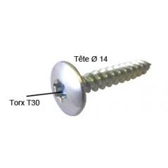 Vis Penture 6x40 Torx T30 AC/ZI REF A080160 ING FIXATION par 100 pieces