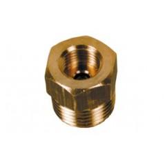 Raccord de thermometre/hydrometre male 1/2